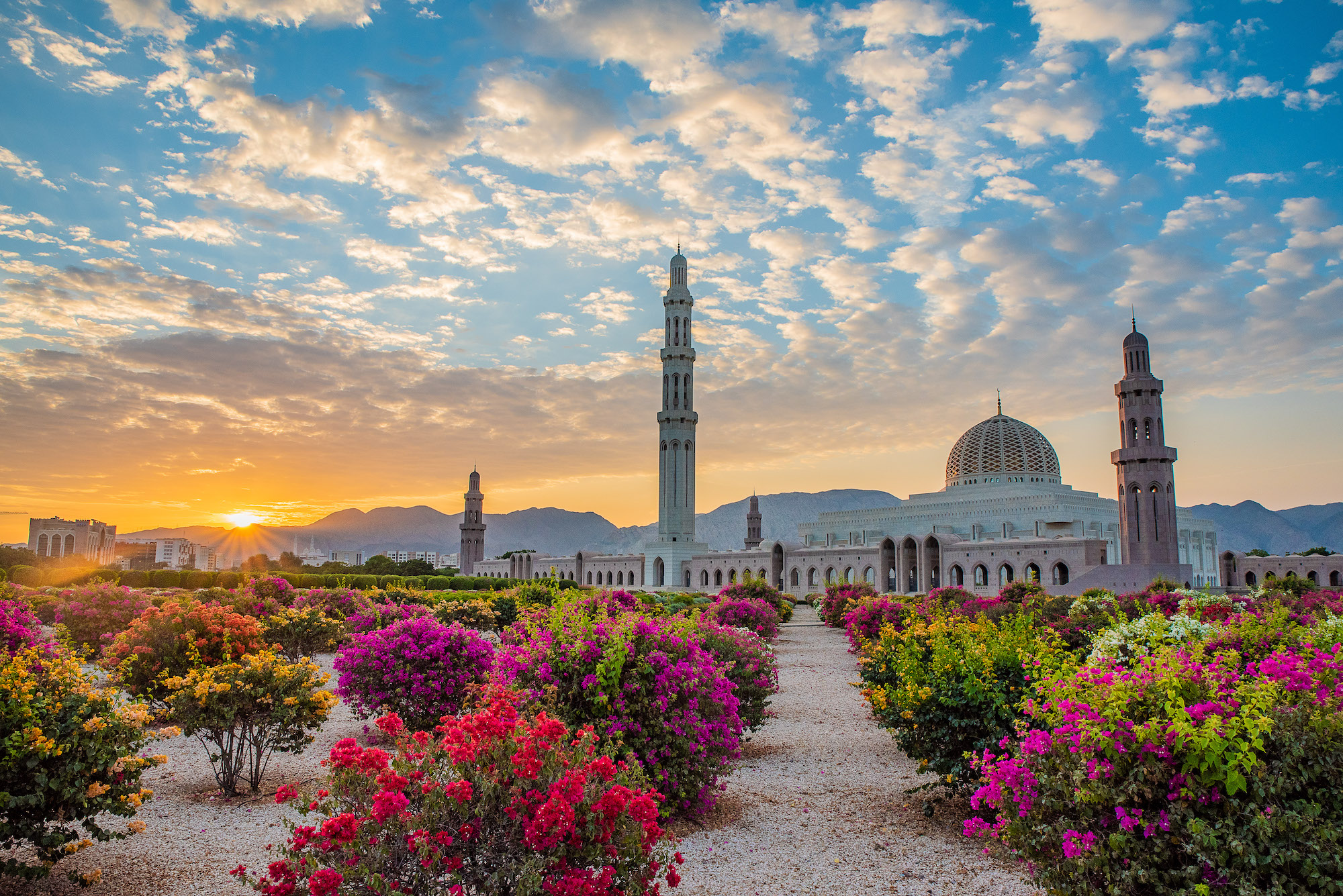Savjetodavne usluge pri uspostavljanju nacionalne turističke organizacije i kongresnog ureda Sultanata Oman